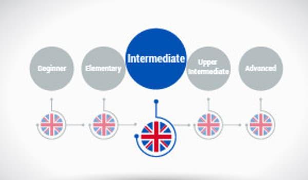 English Grammar - Pronouns & Determiners (Intermediate level) Alison Course GLOBAL - Digital Certificate