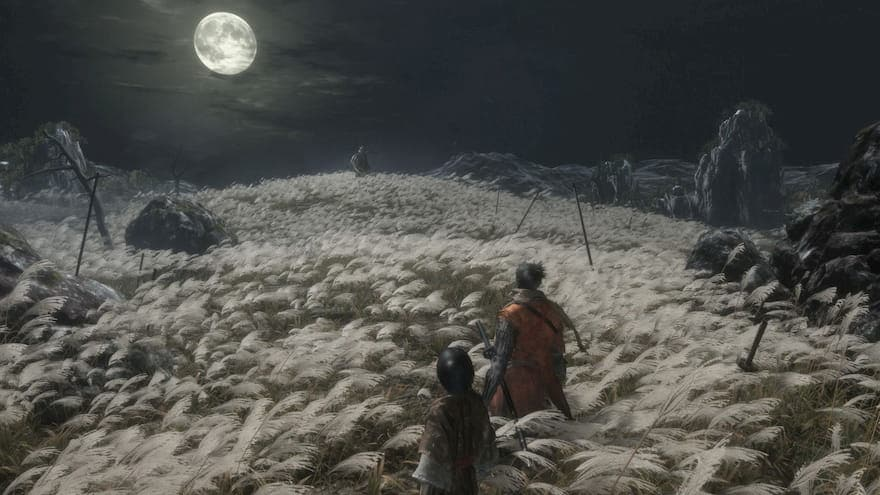 Sekiro with his Master