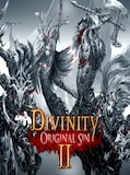 Divinity: Original Sin 2 (PC) - Steam Gift - GLOBAL